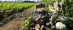 上士幌の村上農場