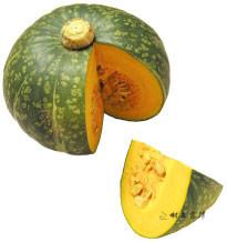 緑皮の南瓜